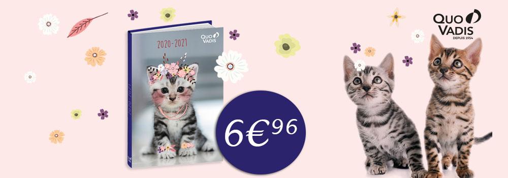 TGV-QUO-VADIS-Agenda-scolaire-Mes-potes-a-chats-2020-2021