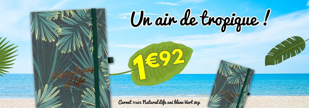Carnet-11x15-Natural-Life-uni-blanc-Vert-80p