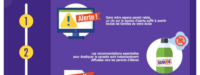 infographie-800px-stop-aux-poux_05